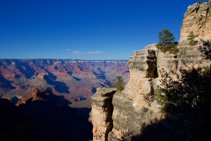 Grand Canyon View
